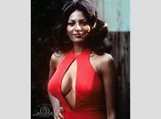 Pam Grier is an icon of the Blaxploitation, no matter how