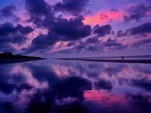 Panoramio - Photo of Purple Pink Sunrise on the Beach ...
