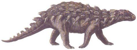 silvisaurus pictures facts dinosaur