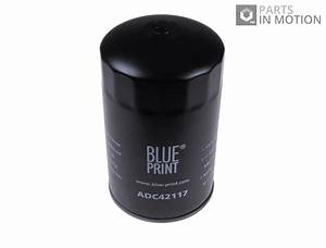 Fits Mitsubishi Canter 2x Oil Filters Pair Blue Print
