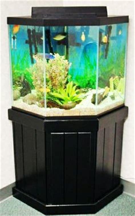aquarium stands images aquarium stand aquarium