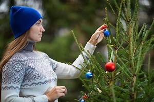 A Guide To Buying Real Christmas Trees  Top 10 Trees