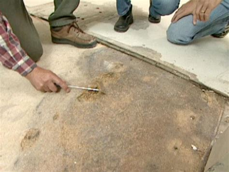repair  water damaged subfloor  tos diy