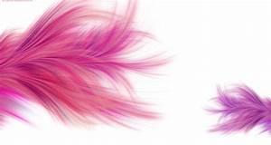 Girly Background Wallpaper Desktop HD Wallpapers ...