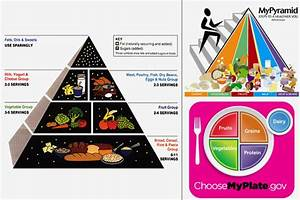 Food Pyramid For Kids And Teens Teens - ga57