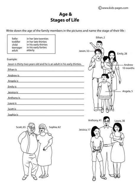 Age & The Stages Of Life B&w Worksheet