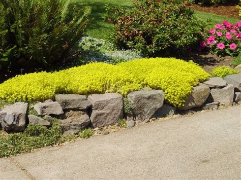 Modern Retaining Wall Landscaping Ideas Collection - Wall Art Design ...