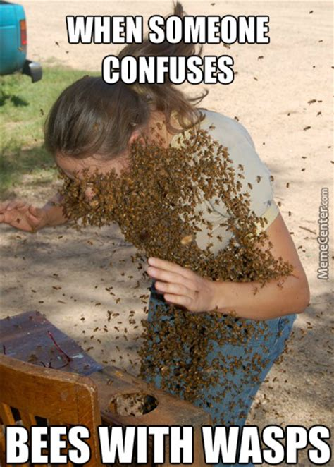 Bee Memes - bee memes best collection of funny bee pictures