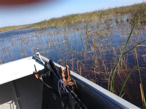 Everglades City Boat Tours by Everglades Picture Of Everglades Area Boat Tours