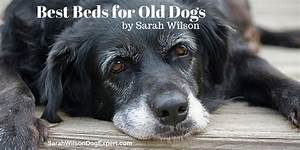 best dog beds for old dogs With best dog bed for older dogs