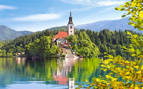 nature lake bled desktop background image wallpaperscom