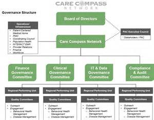 Health Care Organizational Structure Chart