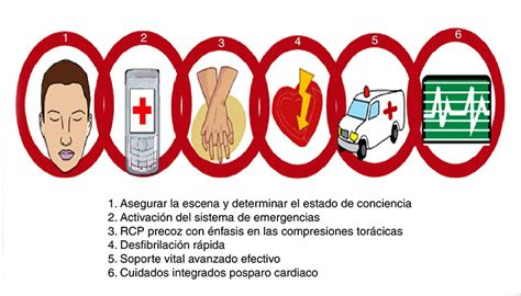 primeros auxilios protocolo pas i zona t 225 ctica