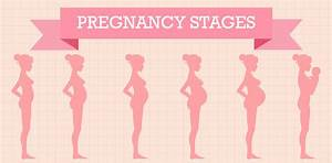 Pregnancy Images - Reverse Search