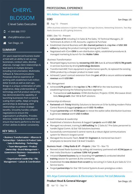 Executive Resume by Sales Executive Resume Mt Home Arts