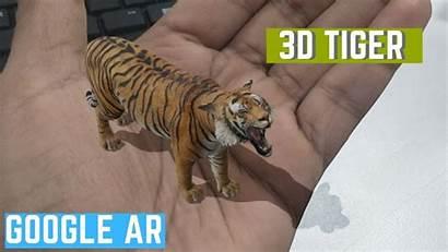 Tiger 3d Google Ar Mobile