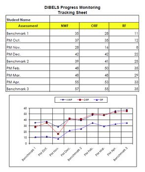 dibels progress monitoring chart  individual students