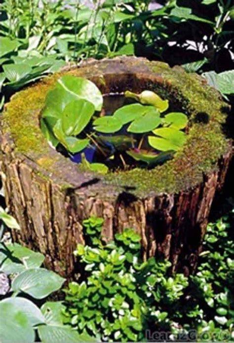 fascinating  budget diy mini ponds   pot