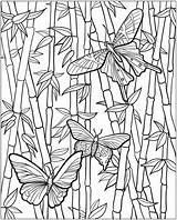 Bamboo Coloring Drawn 1128 Colouring Pencil sketch template