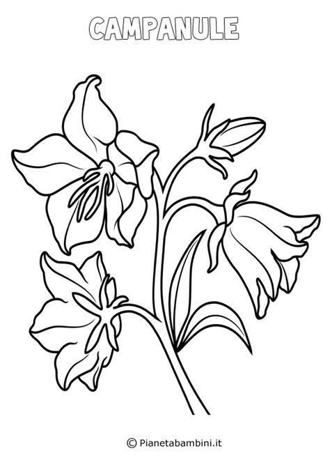 disegni di fiori disegni di fiori di primavera da stare e colorare