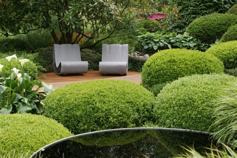 Hilfe Für Buchsbaum › Zinsser Gartengestaltung