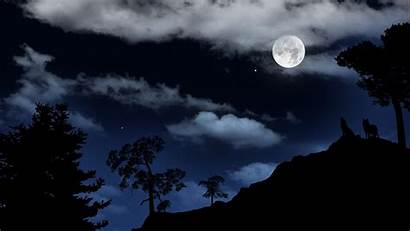 Wolf Howling Moon Viewing