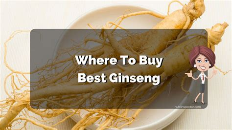 Where To Buy Ginseng  Best Powder, Root, Seed