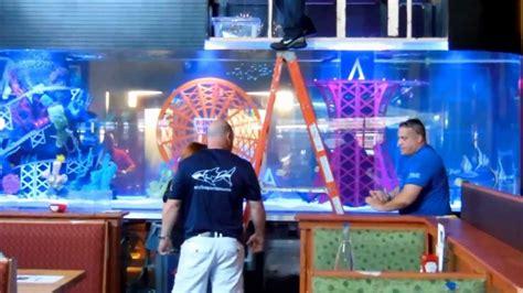 Behind the Scenes: Installing the Applebees Aquarium for ...