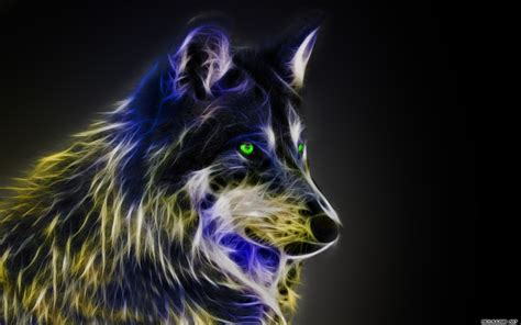 Cool Animal Wallpaper Light Wolf - cool pictures of wolves wallpapers 59 images
