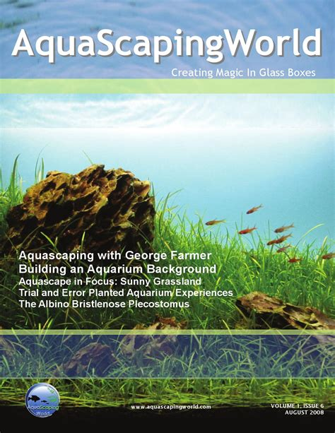 Aquascaping Magazine by Aquascaping World Magazine August 2008 By John N Issuu