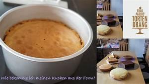 Wie Bekomme Ich Feuchtigkeit Aus Der Wand : wie bekomme ich einen kuchen aus der form appetitlich foto blog f r sie ~ Sanjose-hotels-ca.com Haus und Dekorationen