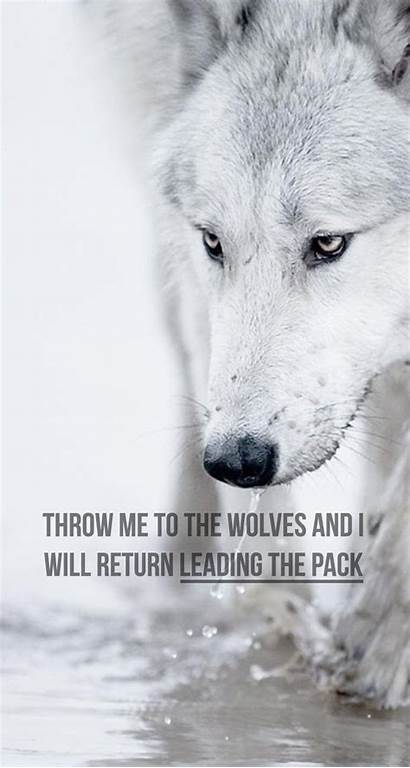 Wolf Iphone Motivational Wallpapers Phone Wolves Quote