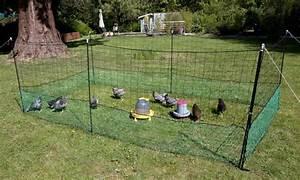 Nourriture Poule Pondeuse Pas Cher : filet enclos pour poules 21 metres animaloo ~ Melissatoandfro.com Idées de Décoration