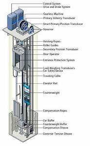 Gearless Traction Elevators