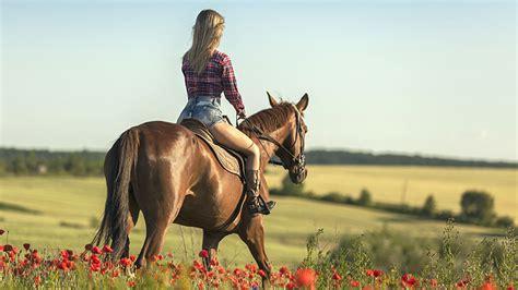 riding horse sydney go places horseback travel scenery exposed