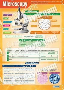 Microscopy  U2013 Science Poster