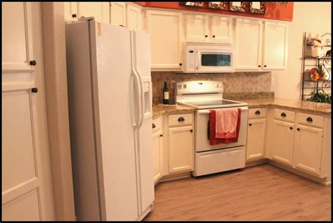 birch kitchen cabinets pros and cons birch kitchen cabinets pros and cons gl kitchen 9263