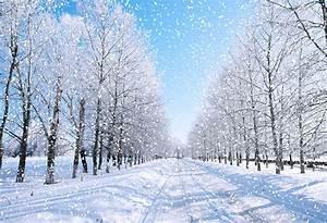 snow landscape photo backdrop nature winter scenery photography backgr – dreamybackdrop