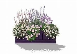 Blumenkübel Bepflanzen Sommer : kollektion 47 balkonkasten pretty in pink staudeng rtnerei gr fin von zeppelin ~ Eleganceandgraceweddings.com Haus und Dekorationen