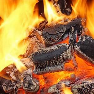 Holzkohle Im Kamin : holzkohle die in bbq oder im kamin brennt stockbild bild von auszug zuhause 41024437 ~ Frokenaadalensverden.com Haus und Dekorationen