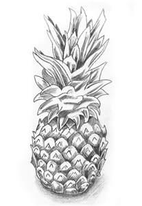 Pineapple Still Life Drawing