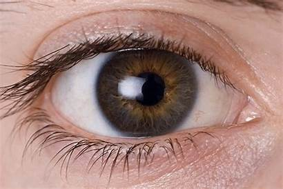 Twitching Eye Eyelid Occhio Piscando Olhos Ojo