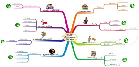 imindmap  quality management principles mind map