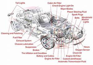 Labelled Diagram Of Car Parts Best Parts Of A Car Engine