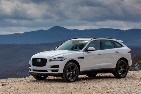jaguar planning larger  pace suv   pace