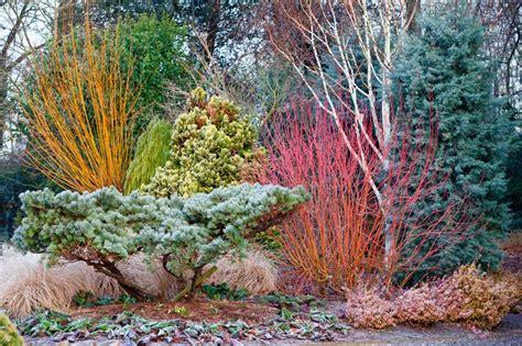 bressingham gardens lush landscapes pinterest garden
