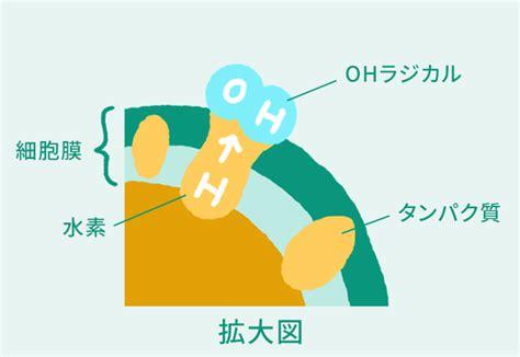 菌 膜 リリース