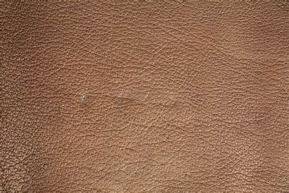 Texture Leather Tan Material Soft Patterned Textures