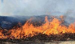 Winter wildfire weirdness continues: Firefighters tackle ...