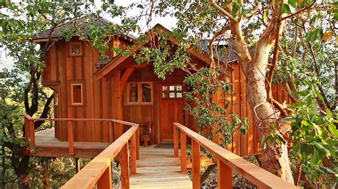 childhood dream home  extreme treehouses